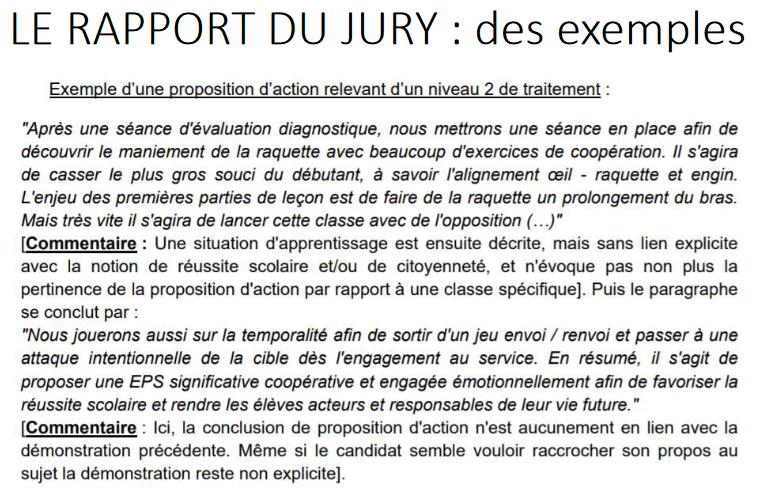 rapport jury capeps interne